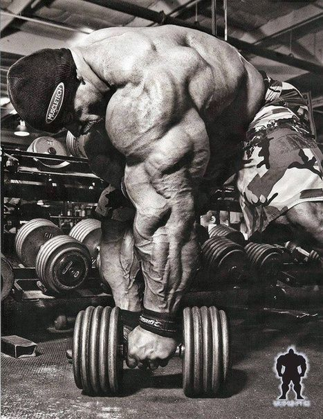 When to Take Supplements for Muscle Building | The 5 Chambers Of Fitness | Scoop.it