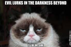 Image result for evil cat