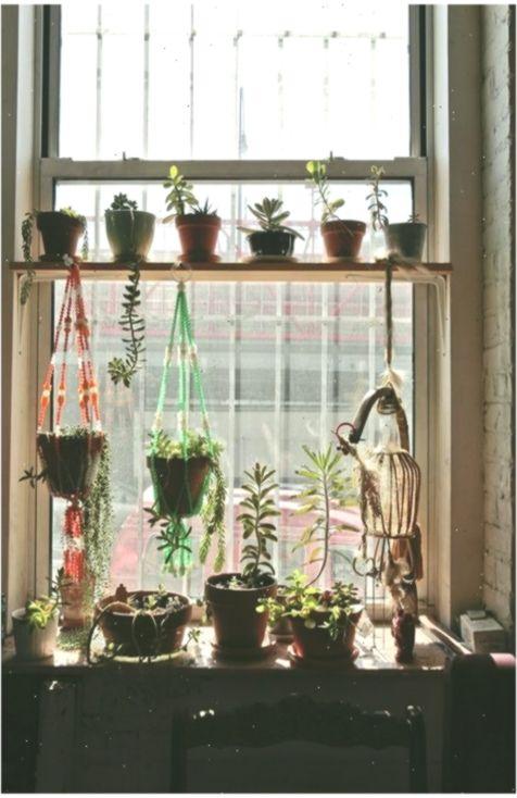 21 Ideen Kuchenfenster Pflanzen Regalflachen Fenster Ideen