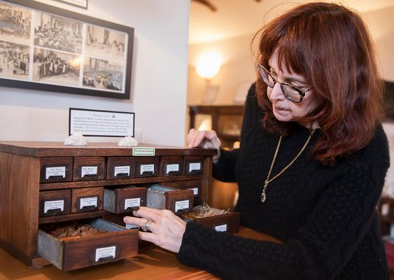 Mandy Aftel's perfume museum seduces with whale vomit and other curious scents