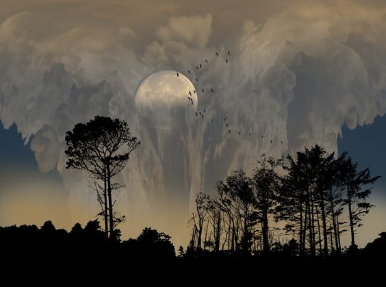 2440 by peter holme iii on 500px