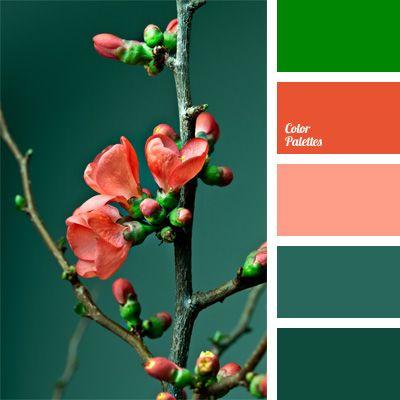 color matching color solution coral color dark coral dark slate gray dark turquoise light. Black Bedroom Furniture Sets. Home Design Ideas