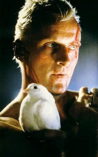 """Blade Runner - A masterpiece by science fiction master Ridley Scott this movie has it all. Fabulous acting with an even more exceptional standout performance by Rutger Hauer. A vision of our future as seen through the eyes of a visionary. """"All those moments will be lost in time, like tears in rain."""""""