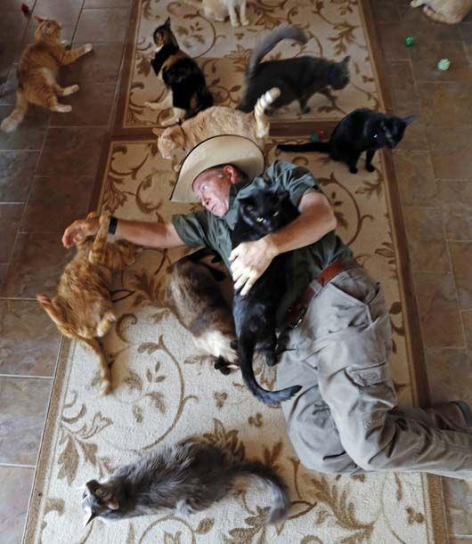People Rescuing Animals   Over 1,500 Animals Were Rescued... by ONE Man - an Incredible Story