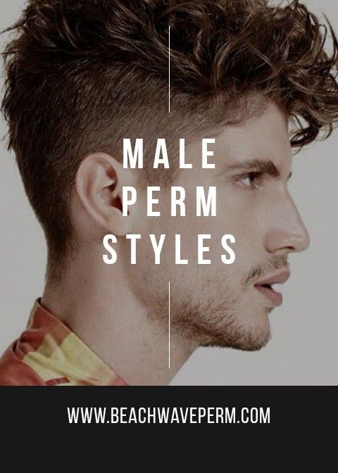 Male Perm Styles Permed Hairstyles Curly Hair Styles Types Of Perms