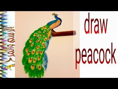 رسم طاووس وتلوينه للأطفال Draw Peacock Youtube Peacock Bird Parrot