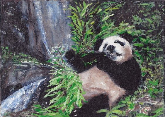 PATH Collection - Panda Bear Eating Bamboo by Joseph Miller