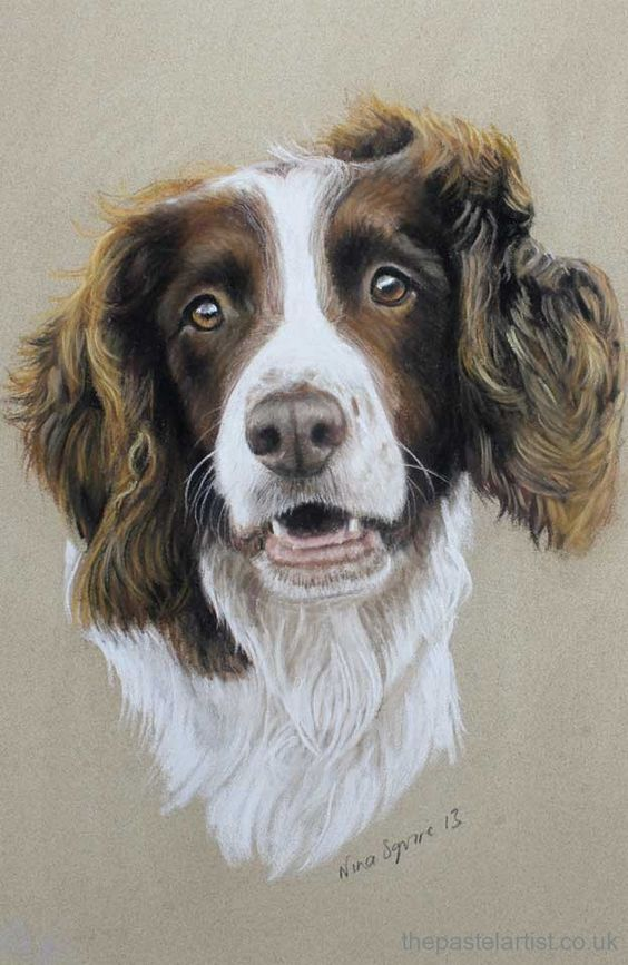 Pastel Dog Portraits By Nina Squire The Pastel Artist Dog
