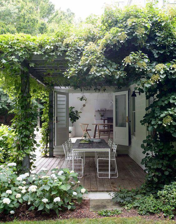 Quintal com amplo jardim. Área externa cercada de plantas e árvores.