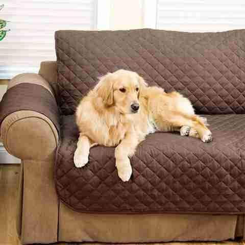 Quilted Waterproof Sofa Slip Cover | Sofa covers, Cushions