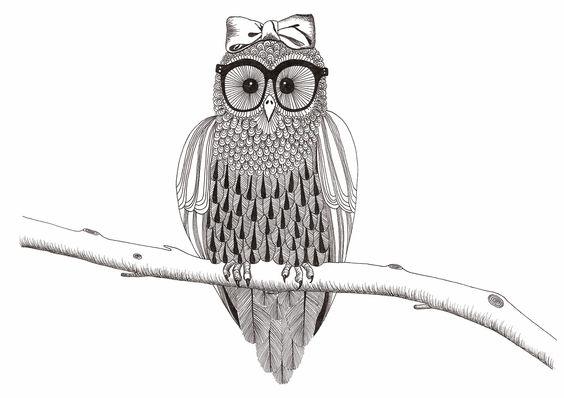 http://3.bp.blogspot.com/-JEFH0E7ofjQ/T0z8mGrLfOI/AAAAAAAAAJA/YDtWuBfyKek/s1600/bow+owl.jpg