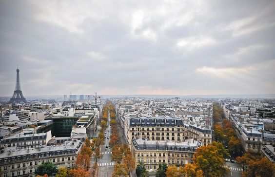 Thomas Jefferson famously said 'a walk in Paris will provide lessons in history, beauty, and in the point of life'. Desperate to experie...