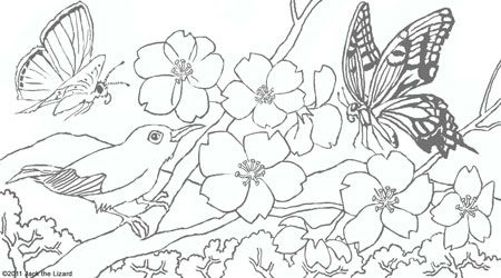 animal coloring pages for adults coloring pages of spring flowers adult coloring pages. Black Bedroom Furniture Sets. Home Design Ideas