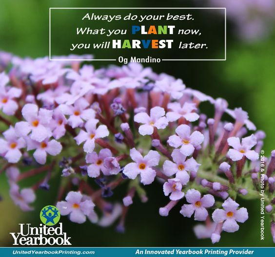 #motivational #inspiration #tuesday #photography #floral #harddwork #classof2016 #yearbooks #schoolmemory #teachers #students