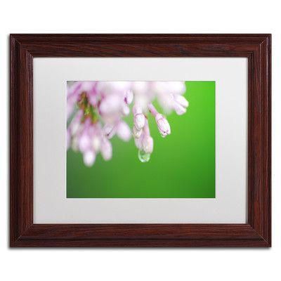"""Trademark Art """"Pure"""" by Monica Mize Framed Photographic Print Size: 16"""" H x 20"""" W x 0.5"""" D"""