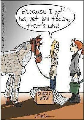 Equestrian problems...