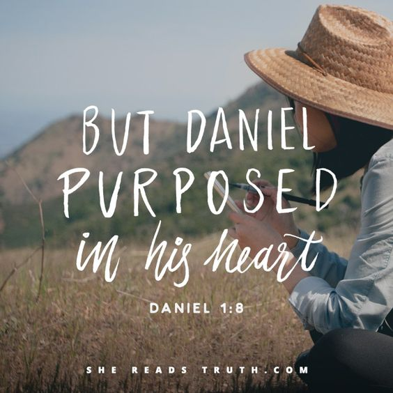 Bible Verses About Determination: Day 4 Of The Daniel Reading Plan From She Reads Truth