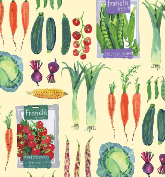 Mary Woodin #Illustration #vegetables #fiveaday #5aday #leek #courgette #peas #greens #vegetarien #beetroot #healthyliving #recipebook #recipe #ingredients #carrot #fresh #wholesome #delicious #leeks #ratatouille