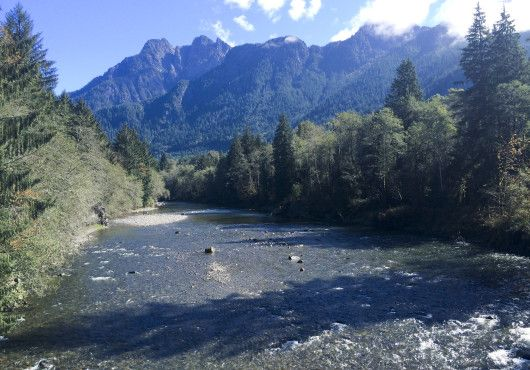 Hike along the Taylor River Trail near the Middle Fork of the Snoqualmie River, less than an hour from Bellevue, Washington.