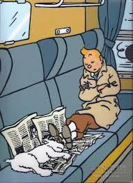 移動中の鉄道で睡眠中のタンタンの画像