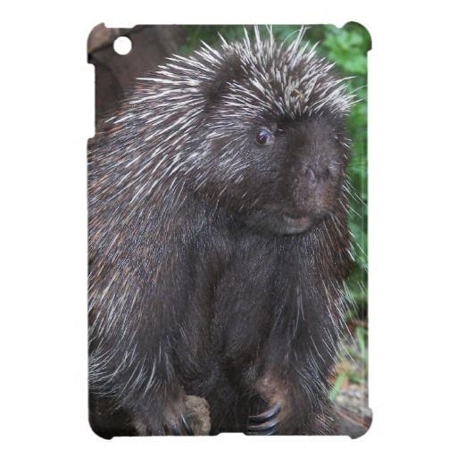 Porcupine iPad Mini Case #animals #nature