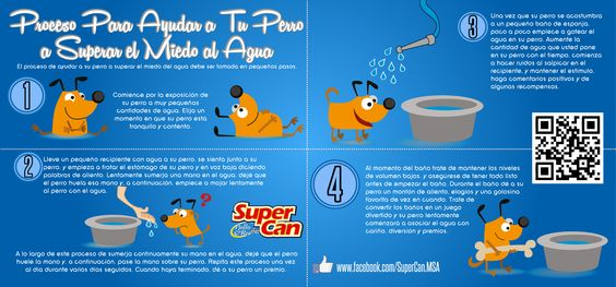 Como acostumbrar a tu #perro al #baño