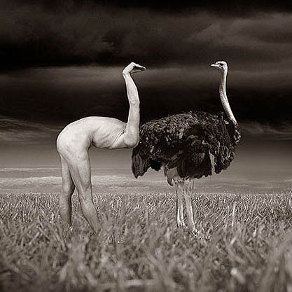 Thomas Barbey | Cunning Linguist