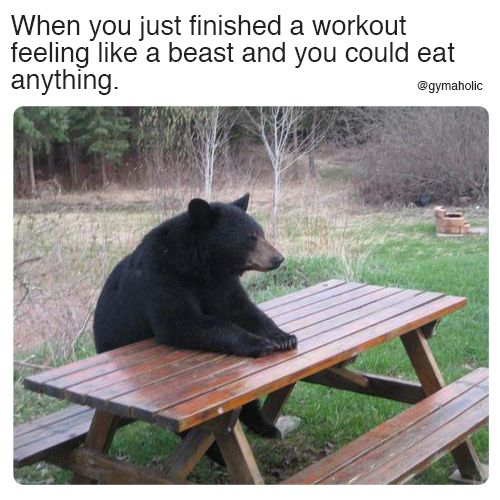 When You Just Finished A Workout Feeling Like A Beast And You Could Eat Anything More Motivation Https Www Gymaholic Co Cute Animals Black Bear Animals