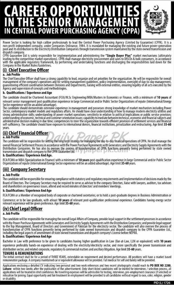 seaofblue CPPA Pinterest - chief executive officer job description