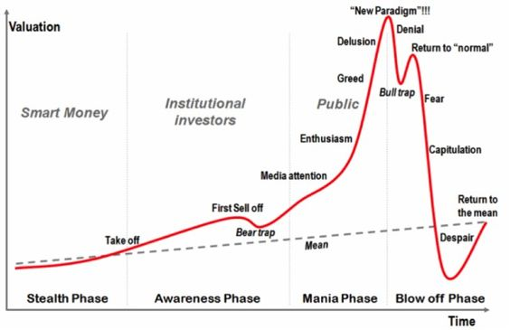 Investors behavior
