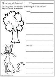 living and non living things worksheets worksheets printable pinterest worksheets. Black Bedroom Furniture Sets. Home Design Ideas