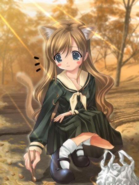 Anime Blonde Cat Otaku