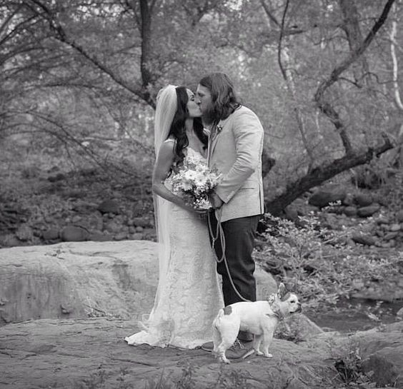 Brie Bella Daniel Bryan And Josie The Pup On The Wedding