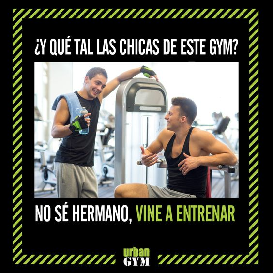 Meme para el gimnasio urban gym urban gym pinterest for En el gimnasio