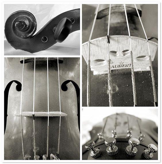 Viola. Gorgeous instrument