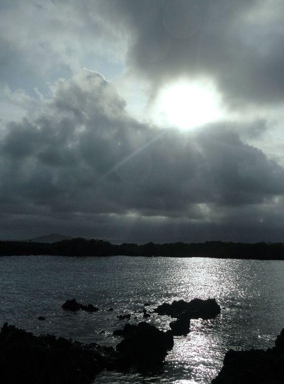 Islas Tintoreras, Galápagos, Ecuador.