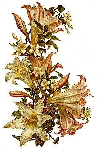 Victorian Spring Clip Art