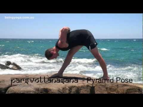 sanskrit names sanskrit and basic yoga on pinterest
