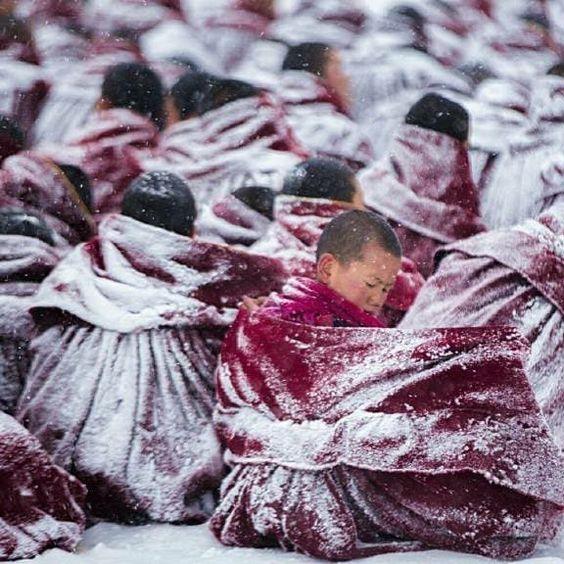 ⠀⠀⠀⠀⠀⠀⠀ ⠀⠀⠀⠀⠀⠀⠀ ⠀⠀⠀⠀⠀⠀⠀ ⠀⠀⠀⠀⠀⠀⠀ 📷བོད།📍TIBET •Keep hashtagging us at #choebay•~~~~~~~~~~~~~~~~~~~~~~~~~~Team @choebay•~~~~~~~~~~~~~~~~~~~~~~~~~~••#Tibet #Photo ⠀⠀⠀⠀⠀⠀⠀#Hill #great #picture #beautiful #everydaylife #family #awlays #addidas #snow #city #import⠀⠀⠀⠀⠀⠀⠀ ⠀⠀⠀⠀⠀⠀⠀ #Study #monastery #monks