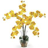 Found it at AllModern - Liquid Illusion Phalaenopsis Silk Orchid Flowers in Yellow