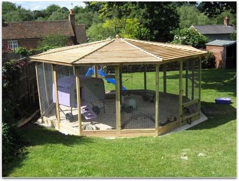 Chicken runs french doors and coops on pinterest for Gazebo chicken coop