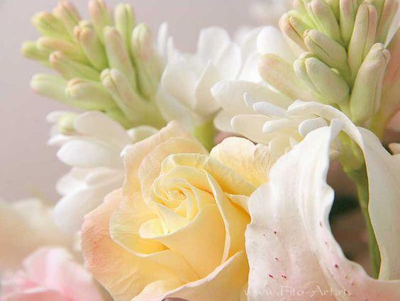 Композиции : Букет с туберозой и английскими розами - Fito Art