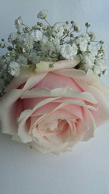Maison la Fleur   corsage van gipskruid en Avalanch  roos.