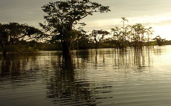 Lago Agrio is a town that boomed with oil extractions
