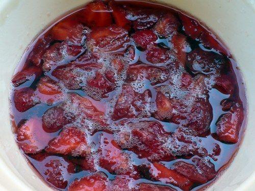 Shrub Syrups And Drinking Vinegar Cold Process