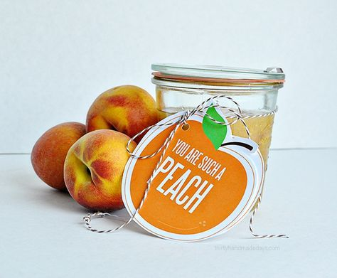 You're a peach printable and gift idea- perfect for anyone. Make this sugar scrub and attach the peach for a super cute gift that anyone will love!