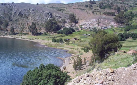 Puerto Acosta is a town located next to Titicaca lake