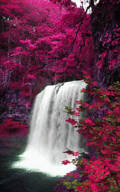Beautiful Beautiful Waterfalls Nature Pictures Beautiful Landscapes