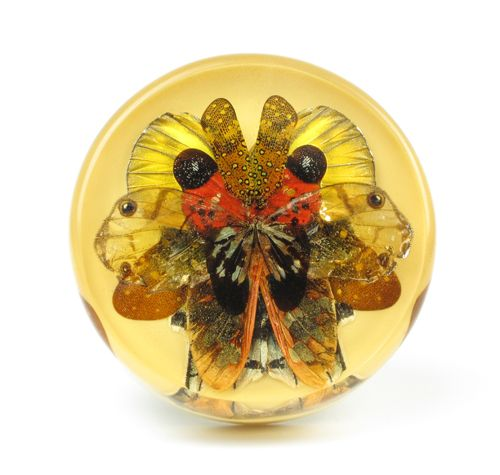 Märta Mattsson Brooch: Rorschach 2013 Wings from butterfly, moth and cicada, resin, silver 8 x 8 x 2 cm