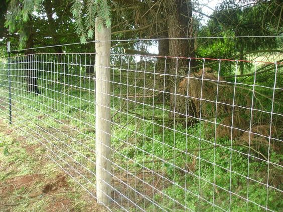 Sheep Amp Goat Mesh Wire Fence By Statewide Fence The Farm